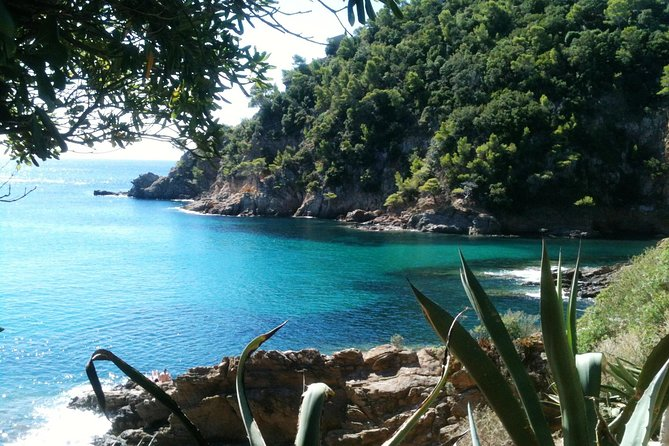 Private Transfer from Toulon Hyeres Airport to Cavalaire