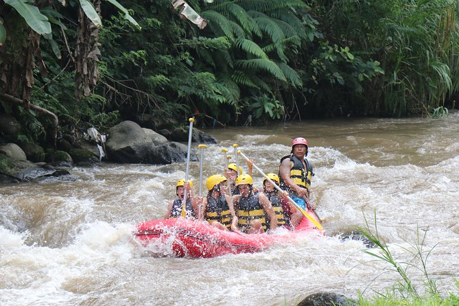 Bali White Water Rafting All Inclusive With Transportation and Lunch photo 11