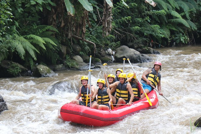 Bali White Water Rafting All Inclusive With Transportation and Lunch photo 23