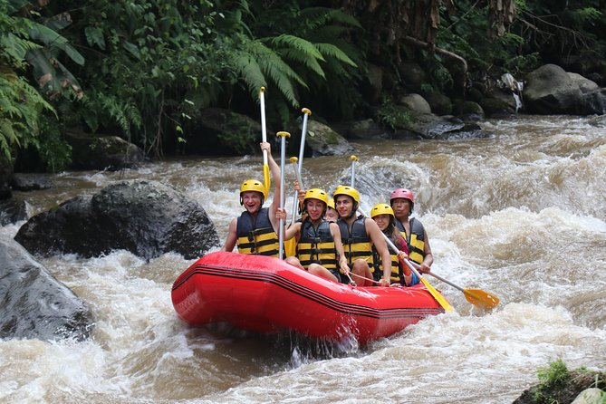 Bali White Water Rafting All Inclusive With Transportation and Lunch photo 16