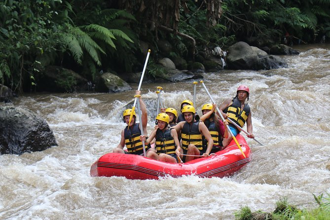 Bali White Water Rafting All Inclusive With Transportation and Lunch photo 3