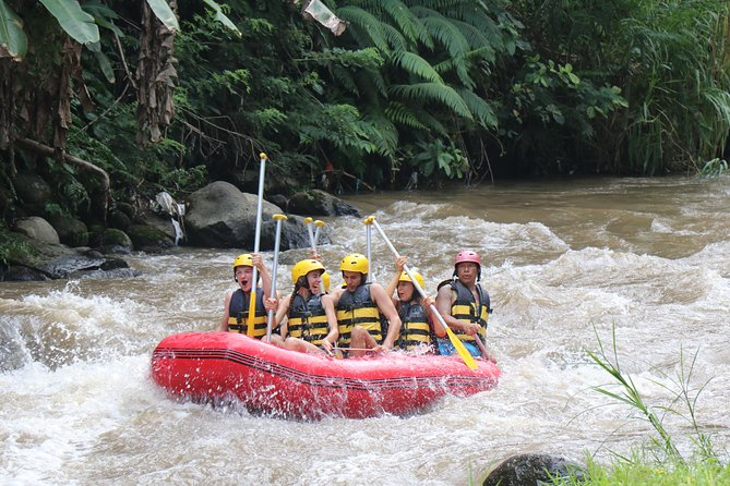 Bali White Water Rafting All Inclusive With Transportation and Lunch photo 20