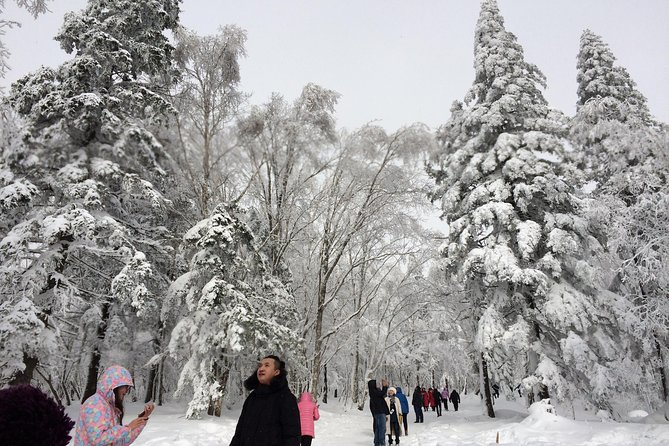 Private Transfer to China's Snow Town from Harbin City