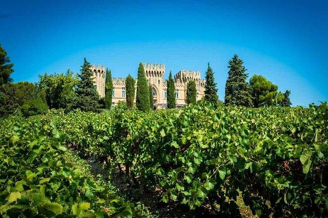 Chateauneuf du Pape wine tour