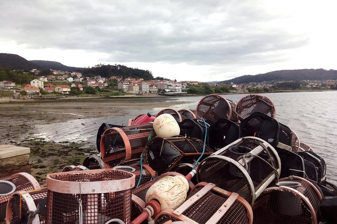 Full-day Rias Baixas Guided Tour from Santiago