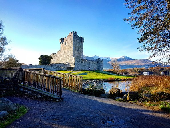 Jaunting Car Tour to Ross Castle from Killarney photo 7
