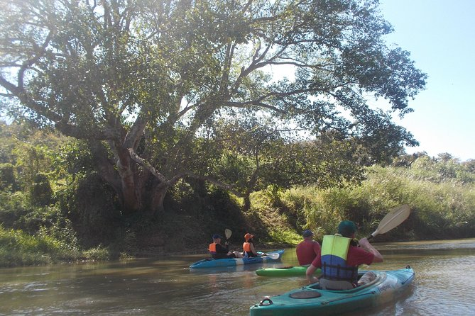 Full-Day Leisure River Kayaking into Mae Taeng Forest Reserve from Chiang Mai photo 3