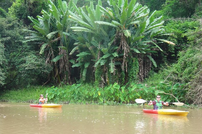 Full-Day Leisure River Kayaking into Mae Taeng Forest Reserve from Chiang Mai photo 4