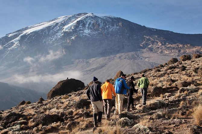 Mt. Kilimanjaro short trekk photo 2