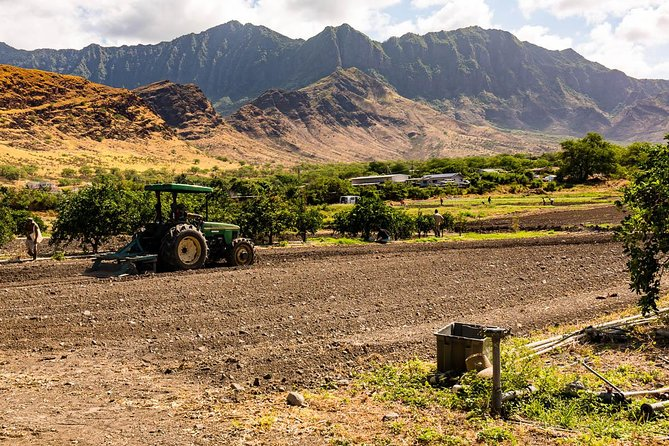 Farm to Forest, Oahu Tour