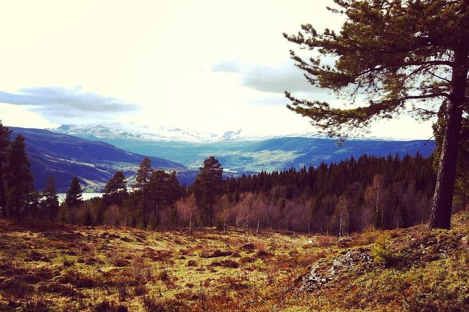 TRANSFER, LUXURY CAR 1-3 PAX: Bergen – Fagernes, Valdres