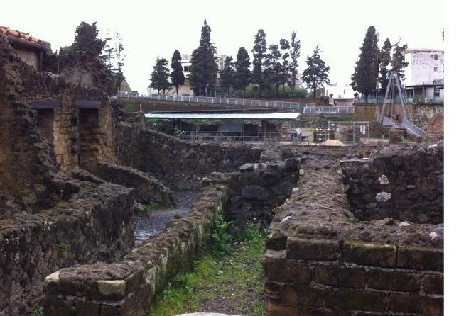 Transfer from Naples to Sorrento with a 2hr stop at Herculaneum (1-8 PAX)
