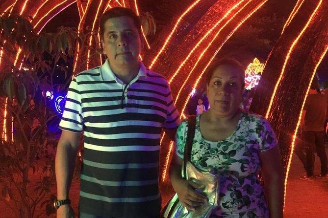 Christmas Lights Tour in Medellin