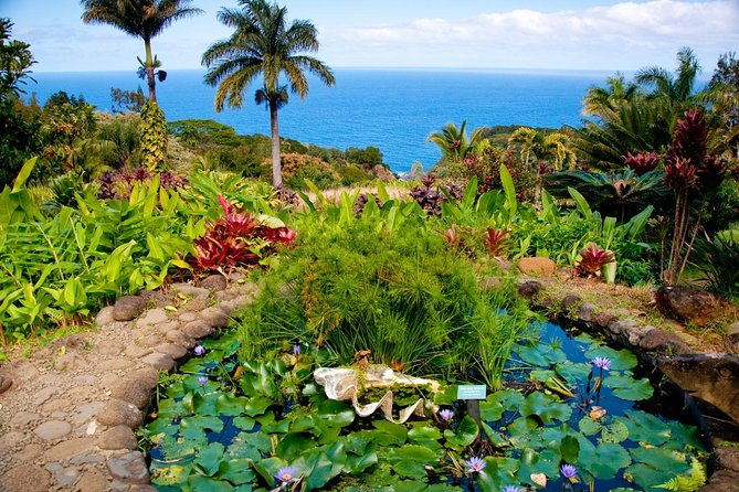 Maui Private Guide - Anywhere in Maui Just for Your Party