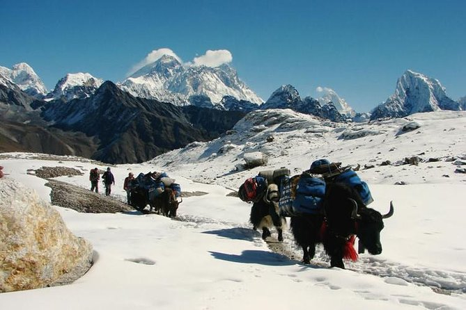 Mount Everest Panorama View Trek