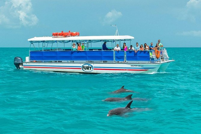 Key West Dolphin Watch and Snorkel Cruise photo 10