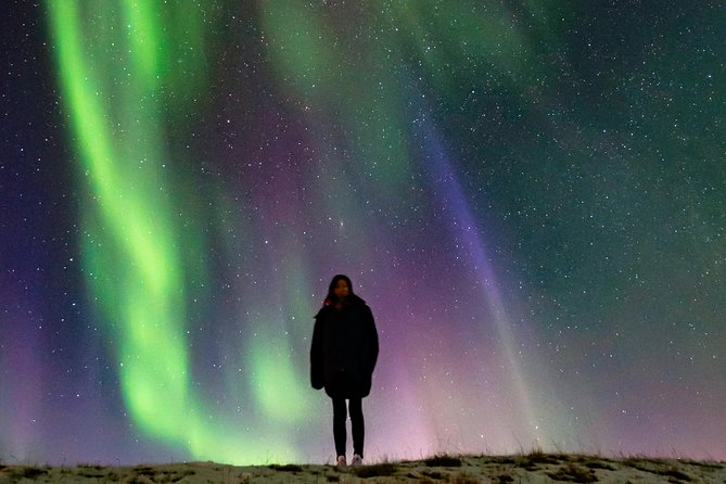 Iceland's South Coast & Northern lights Day Trip from Reykjavik