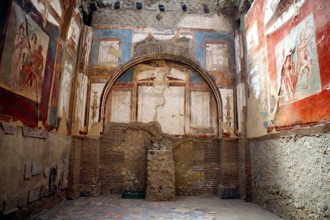 Half-Day Private Herculaneum Tour by Minivan