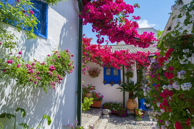 Authentic Patios of Cordoba Guided Tour