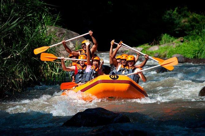Bali Toekad Ayung River White Water Rafting