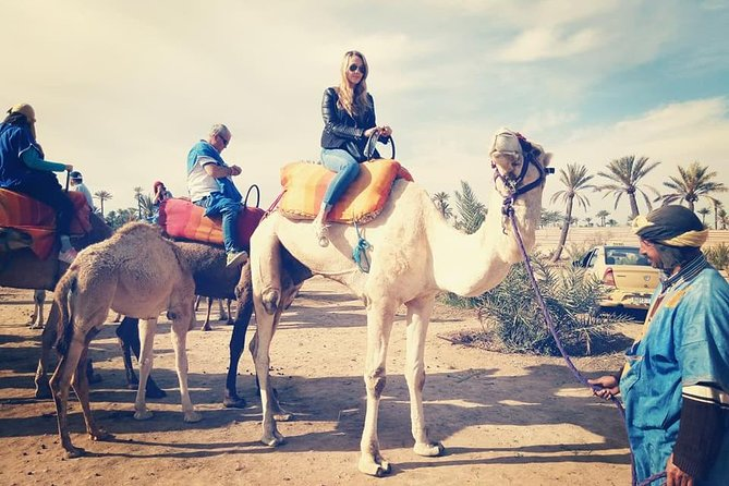 Camel Ride Experience Around Marrakech