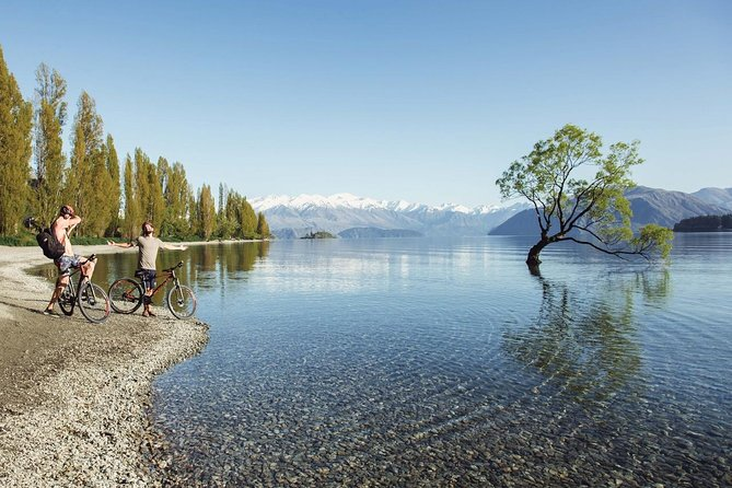 Flexible Fully Guided South Island Bus Pass- Christchurch to Christchurch return