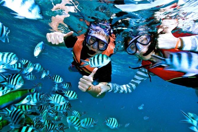 Mantanani Island Snorkeling Tour 2020 - Kota Kinabalu