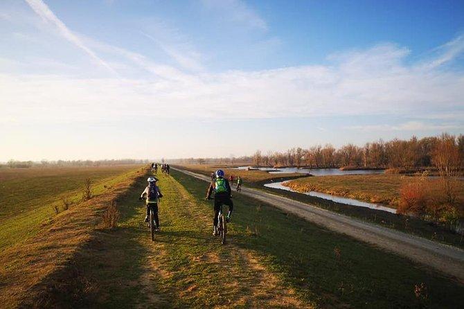 Nature park Lonjsko polje e-bike tour with wine tasting