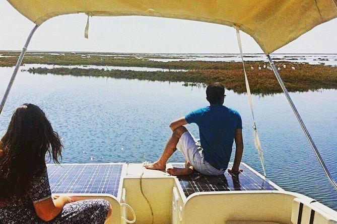 Ria Formosa Eco Boat Trip from Faro