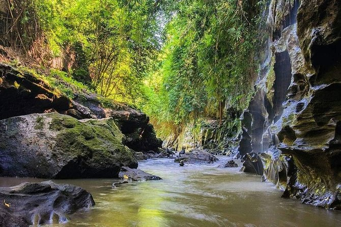 Full Day Tour-Hidden Canyon Guwang Village and Ubud village Exploration