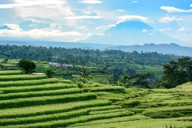 Private Tours 2 days west & north bali