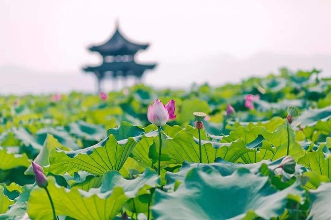 All-Inclusive Classic Private Hangzhou Day Trip from Shanghai by Bullet Train