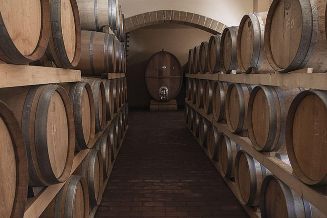 Etna Tour and Lunch in a Winery with Wine Tasting