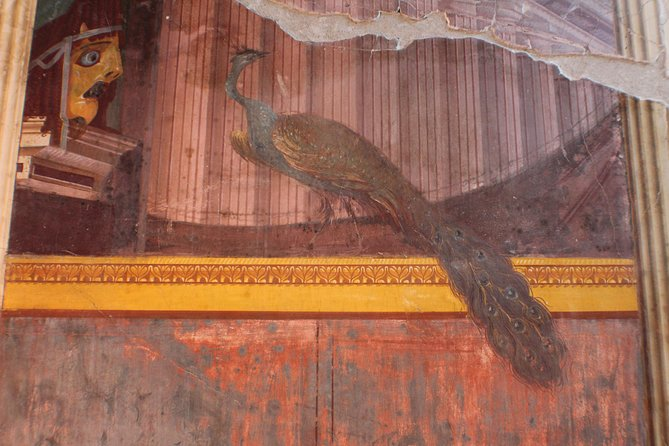 Skip-the-Line Ancient Pompeii, Oplontis & Herculaneum Sites Private Guided Tour