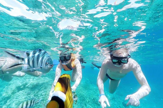 El Gouna VIP Sea Trip Snorkeling -Hurghada