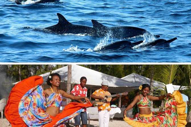 Delfiner, BBQ, Sega Dance & Music på Bénitiers Island, Mauritius