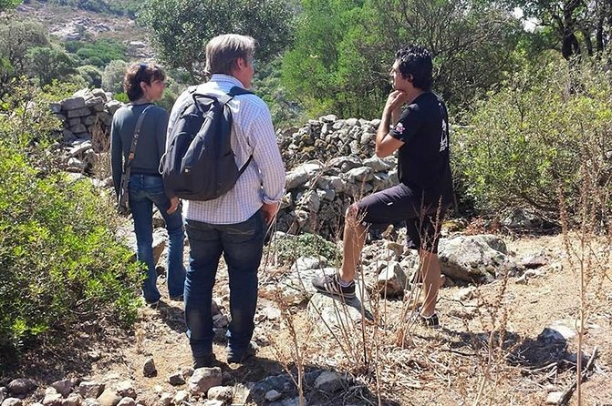 Cagliari: Is Cannoneris Nature Reserve Jeep and Walking Tour from Chia photo 42