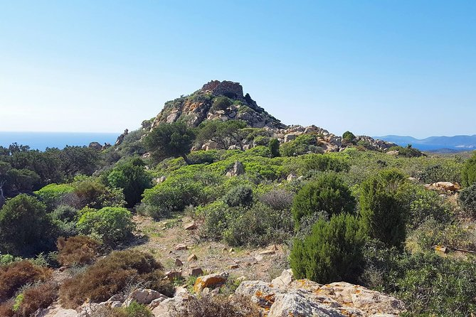 Cagliari: Is Cannoneris Nature Reserve Jeep and Walking Tour from Chia photo 14