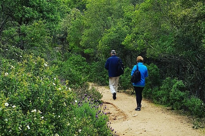 Cagliari: Is Cannoneris Nature Reserve Jeep and Walking Tour from Chia photo 10
