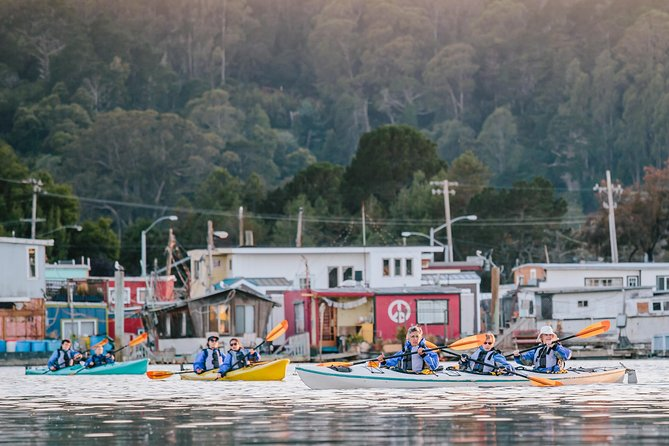 Scenic Sausalito Kayak Tour: Beginners Welcome