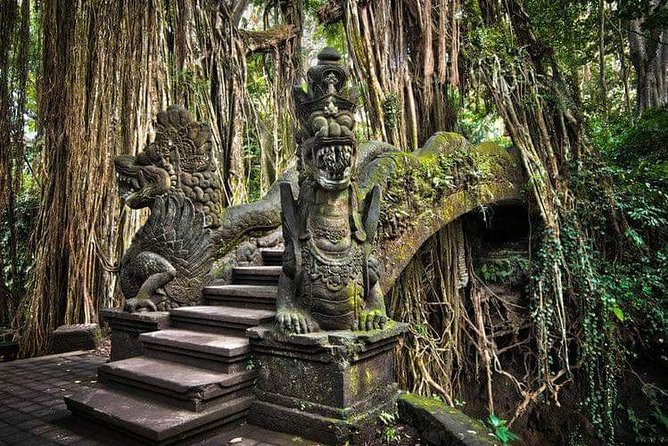 Private ubud village day tour & waterfalls surrounding