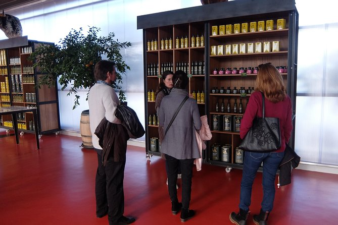 Olive Oil Experience in Ronda (including a visit to Ronda)