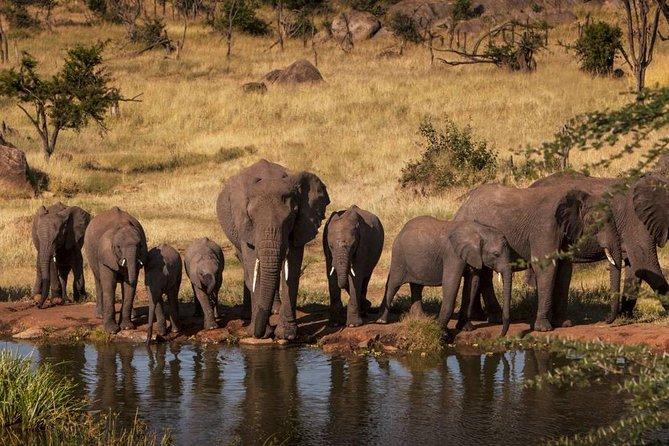 2-Days Safari to Tarangire National Park and Ngorongoro crater