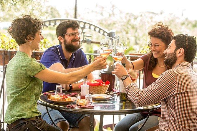 Mount Vesuvio Organic Wine Tasting & Lunch with Transfer from Amalfi Coast
