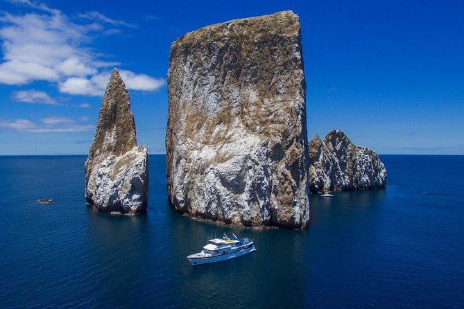 Galapagos Cruise Deals 5 and 8 Days photo 4