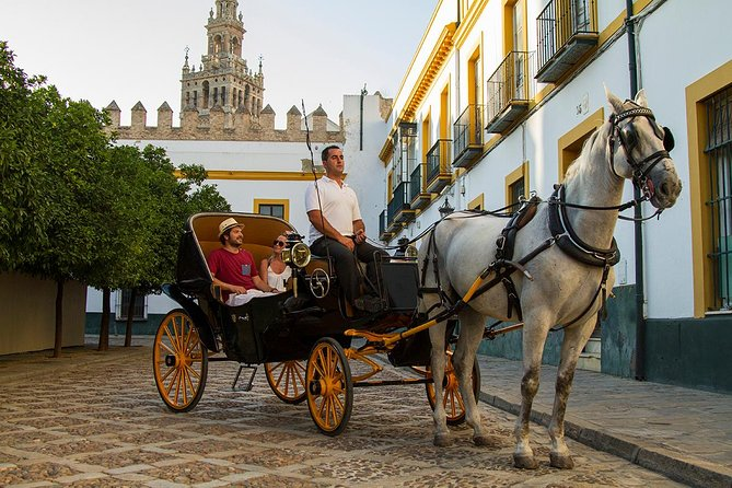 Romantic Horse & Carriage Tour with spanish Champagne photo 15