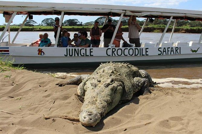 One Day Tour ( Crocodile River Tour & Aerial Tram) From San José