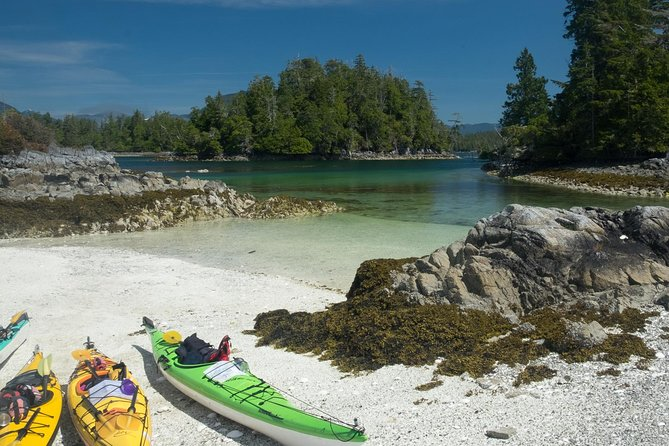 Small-Group Pacific Ocean Islands Kayak Tour