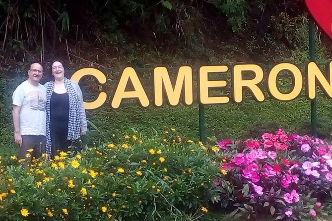 Cameron Highlands Sunrise Discovery and Morning Tea Tour