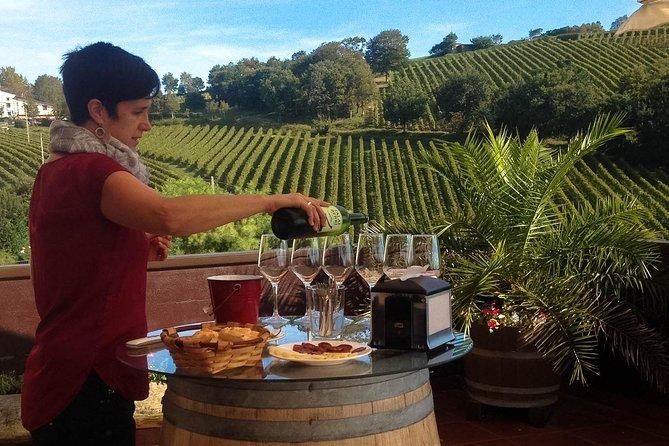 San Sebastián, Txakoli winery and coastal villages. Maximum 4 persons.
